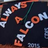 AlwaysaFalcon