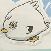 seagull_stan