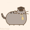 Academic Amnesty-vs-Transferring during undergrad: how does each affect graduate school admission? - last post by MathCat